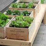 Amazing Gardening Balcony Low Budget 07