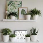 Cozy Green Livingroom Ideas 42