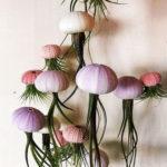 Amazing Air Plants Decor Ideas 09