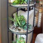 Amazing Air Plants Decor Ideas 18