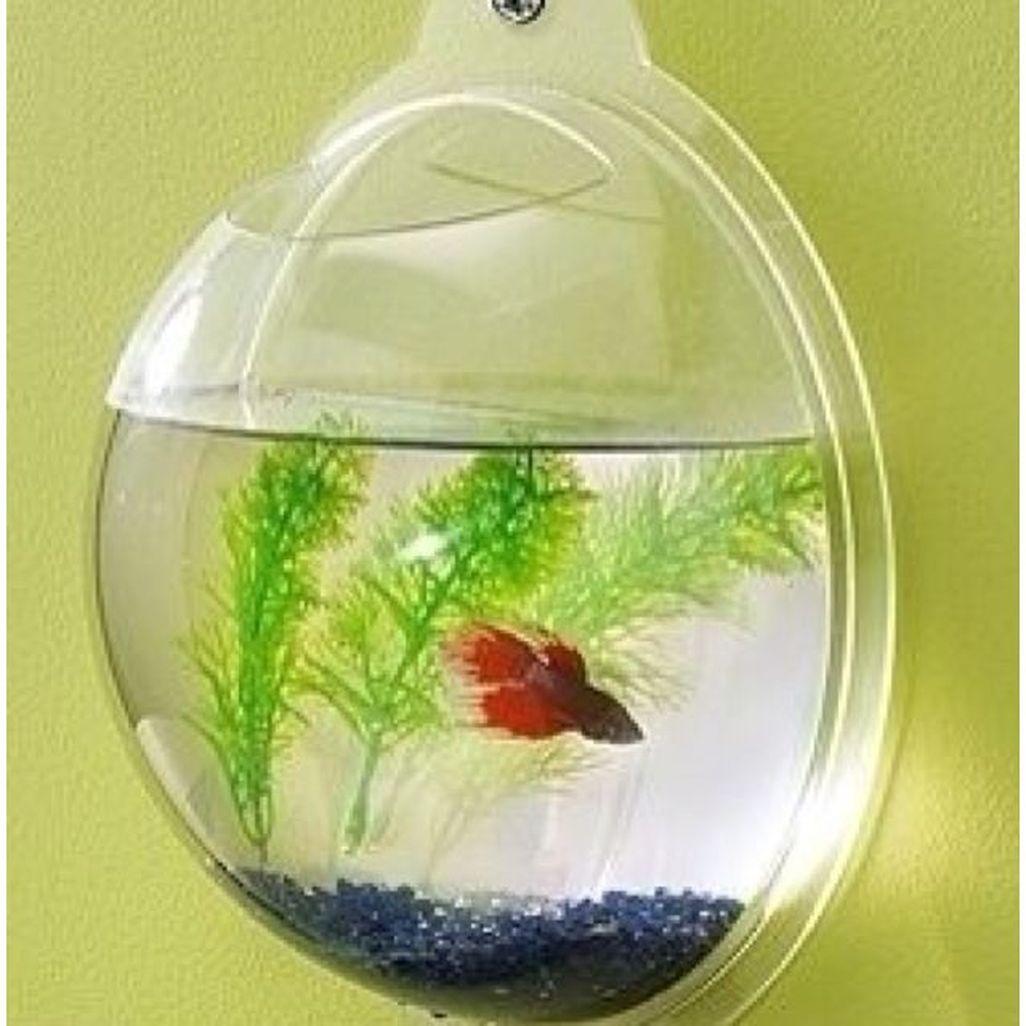 Amazing Aquarium Design Ideas Indoor Decorations 07