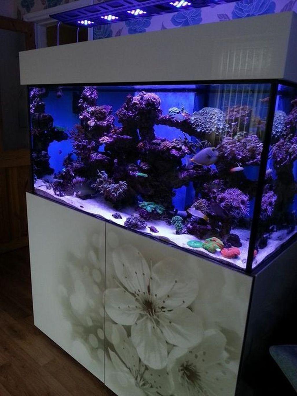 Amazing Aquarium Design Ideas Indoor Decorations 08