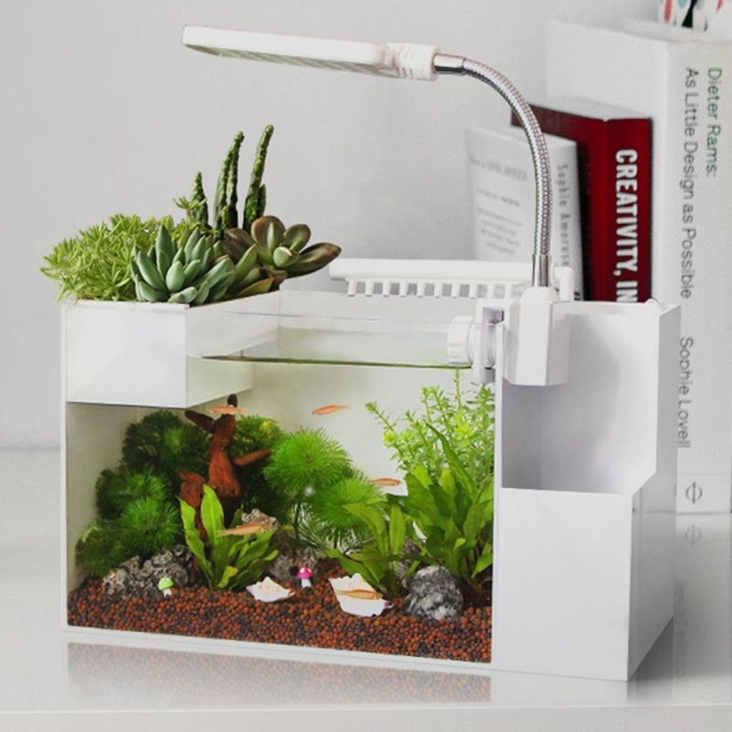 Amazing Aquarium Design Ideas Indoor Decorations 11