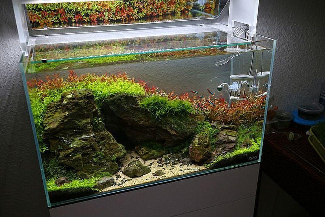 Amazing Aquarium Design Ideas Indoor Decorations 20