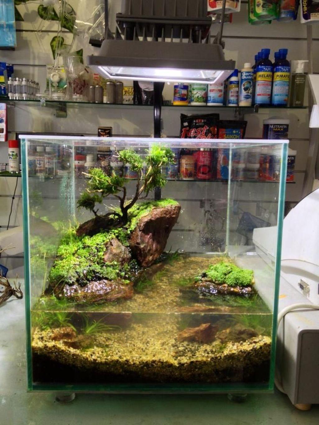 Amazing Aquarium Design Ideas Indoor Decorations 28