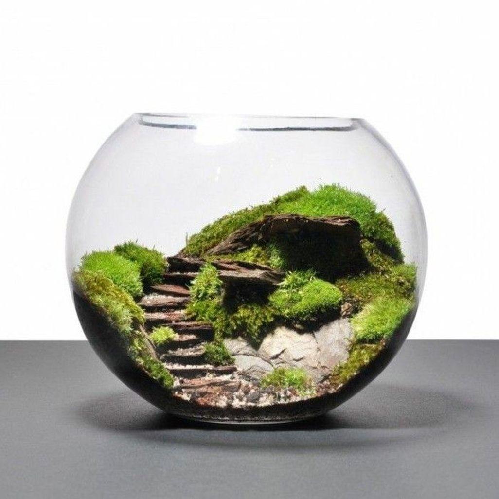 Amazing Aquarium Design Ideas Indoor Decorations 29