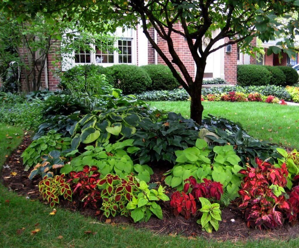 Awesome Backyard Landscaping Ideas Budget13